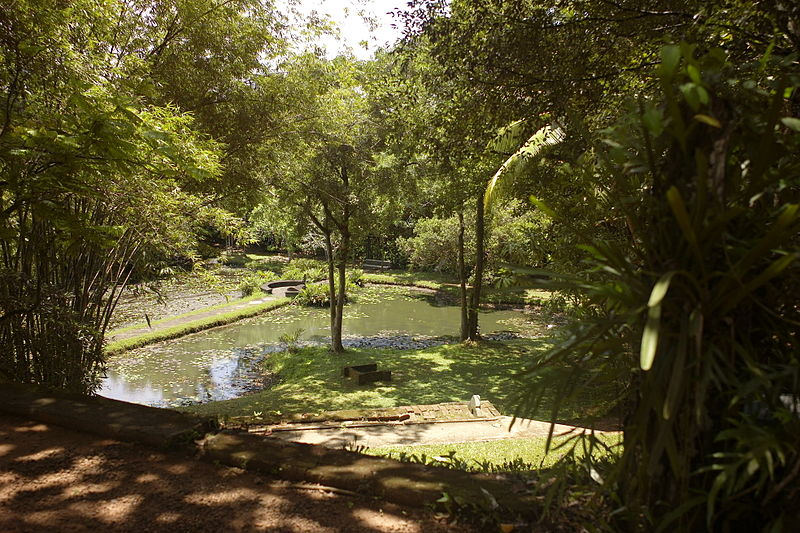 File:Lunuganga, Bentota, Sri Lanka..JPG
