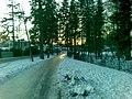 Mähe road - panoramio - Aulo Aasmaa (3).jpg
