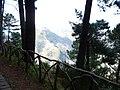 Madeira3 025.jpg