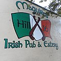 Maguires Hill 16 All June 19 2019-02-05 0951 A300.jpg