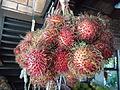 Malaysian Fruits (11).JPG