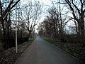 Malchow Hohenschönhauser Weg 02.jpg