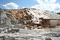 Mammoth Hot Springs 2.jpg