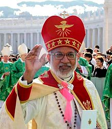 Mar George Cardinal Alencherry.jpg
