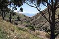 Marlborough Region landscape from Highway No 1.jpg