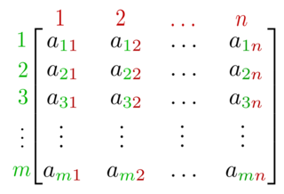 Matrix (mathematics) Two-dimensional array of numbers with specific operations