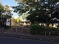 Matsudo higurashi koen01.jpg
