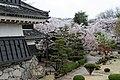 Matsumoto Castle (7423764296).jpg