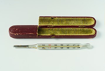 Medical mercury thermometer with velvet-lined cardboard box - focus stack (2020-05-25).jpg
