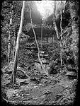 Mermaid's Cave, Katoomba (4903259183).jpg
