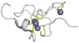 Metallothionein
