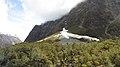 Milford Sound Hwy, South Island (483018) (9482244155).jpg