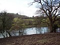Mill Pond - geograph.org.uk - 369758.jpg