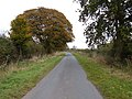 Minor Road Towards South Dalton - geograph.org.uk - 1543182.jpg