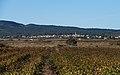 Mireval, Hérault 02.jpg