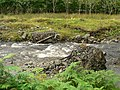 Missing bridge in Glen Ample - geograph.org.uk - 577685.jpg