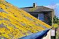 Modbury Farm - geograph.org.uk - 1125795.jpg
