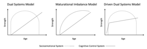 Dual systems model - Development of the socioemotional and cognitive control systems as depicted by the dual systems model, maturational imbalance model, and driven dual systems model