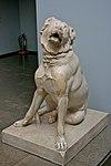 Molossian Hound, British Museum.jpg