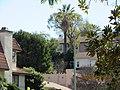 Monterey Park, CA, USA - panoramio (382).jpg