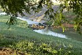 Morning Drainage (4541559101).jpg