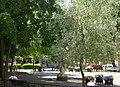 Mosebacke park 2010.jpg