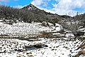 Mount Buffalo N.P. 24.jpg