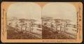 Mount Tamalpais from Sausalito, San Francisco, Cal., U.S.A, by Singley, B. L. (Benjamin Lloyd) 2.png