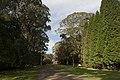 Mount Wilson NSW 2786, Australia - panoramio (62).jpg