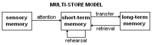 Atkinson–Shiffrin memory model - Multi-store model: Atkinson and Shiffrin's (1968) original model of memory, consisting of the sensory register, short-term store, and long-term store.