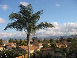 Murrieta, California - Westward view of Murrieta/Temecula.