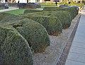 Musée national de la résistance - Garden (Esch-sur-Alzette).jpg