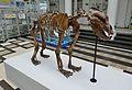 Muzeum Geologiczne w Warszawie 2013 05.JPG