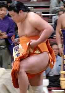 Myogiryu 2010 Jan.JPG