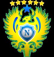 Leões da Amazônia  Nacional Futebol Clube d29e92e9284c9