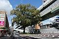 Nagoya Expwy. No.1 Kusunoki Route 20160321A.JPG