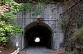 Nara Prefectural Road Route 224 (Osanotaira tunnel)-02.jpg