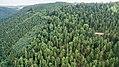 Naturschutzgebiet Ilmwand Nordwand II.jpg