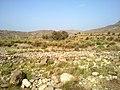 Navidhand new 338 - panoramio.jpg
