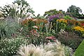 Ness Botanic Gardens, Wirral - geograph.org.uk - 290788.jpg