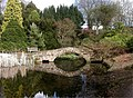 Ness Gardens - geograph.org.uk - 329936.jpg