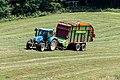 New Holland T6.165, Hoppeschpesch, Rindschleiden-102.jpg