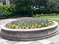 New York Botanical Garden 02.jpg