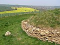 North-west corner of Stoney Littleton long barrow - geograph.org.uk - 446933.jpg