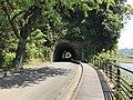 North entrance of Aonodomon Tunnel.jpg