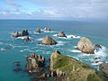 Nugget Point on Sunny Day.JPG