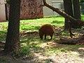 OKC Zoo May 2007 - 52 (497213560).jpg
