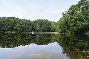 Oceana Pond 20 LR.jpg