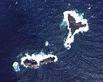 Okinokitaiwa of Senkaku Islands.jpg
