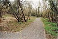 Old School Gardens, Llanteg - geograph.org.uk - 1048955.jpg